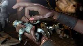 Revenge and Protection Spell +27718452838 Mamamponye.com